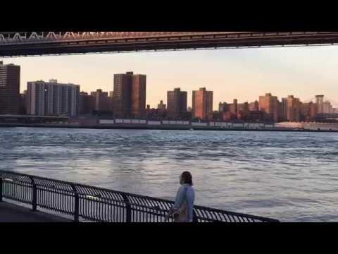 Brooklyn Bridge Park LAN