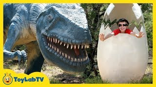 Repeat youtube video GIANT LIFE SIZE DINOSAURS IRL! Dinosaur World Park, Family Fun Activities, Kids Toys & Surprise Eggs