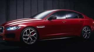 Jaguar: с Натальей Синдеевой