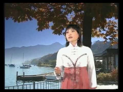 Tieng hat HOA MI - THANH TONG Part 4/9