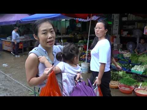 Chinese Girl Explores a Wet Market in China