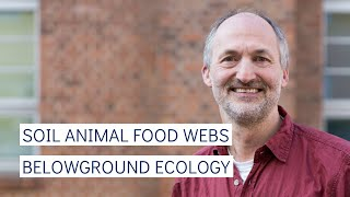 How Do Belowground Components Contribute to the Healthy Functioning of Ecological Systems?