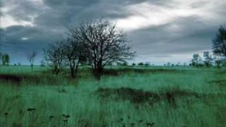 Dayturn - Mirco De Govia
