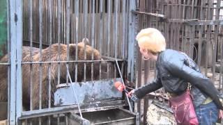 Novosti  010416 Zoo