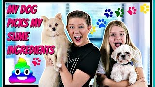 MY DOG PICKS MY SLIME INGREDIENTS CHALLENGE || Taylor and Vanessa