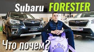 Детальный обзор Subaru Forester 2018