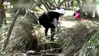 Repeat youtube video D奶韩国女神赵茹珍被叮满脸包 曾全裸出演情色片