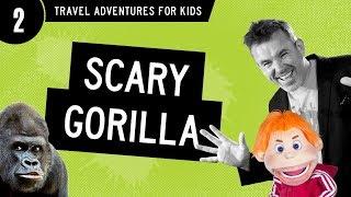 KEVIN meets massive Silverback gorilla! (VLOG 2)