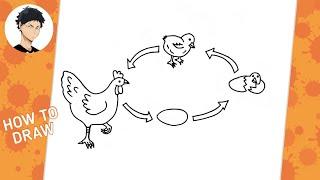 Cara Menggambar Daur Hidup Atau Pertumbuhan Ayam Youtube