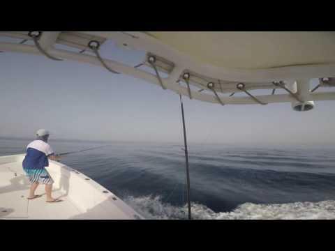 Tuna casting failed 😂 with masterbaiters