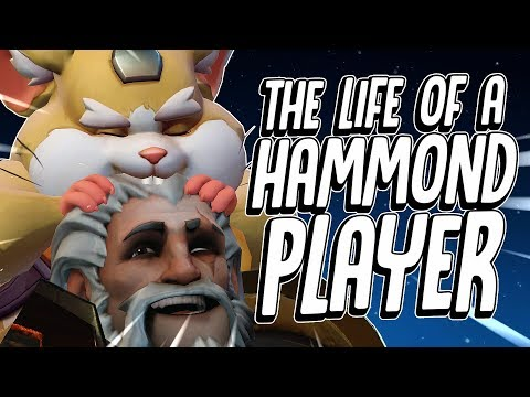The life of a HAMMOND player