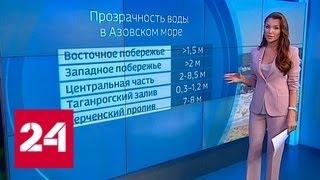 ВМС Украины против российского десанта: чем грозит минирование Азовского моря - Россия 24