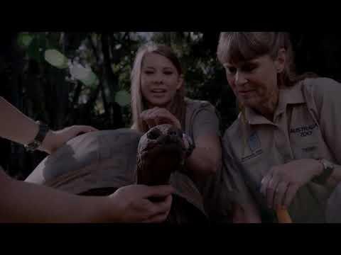 Australia zoo, le défi des Irwins - Discovery Family