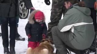 Жара  и холод(Подготовка защитных собак. Элементы послушания и социализации. Различные бытовые ситуации., 2010-02-04T09:44:15.000Z)
