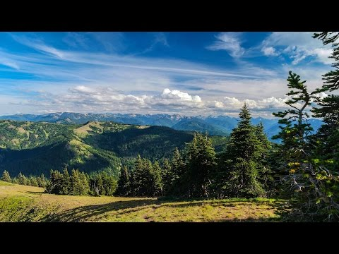 Hurricane Ridge Trail - Olympic National Park WA 4K UHD