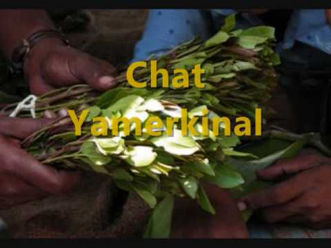 New Ethiopian  funny  music /Chat Yamerekinal