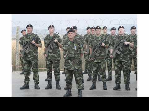 Irish Army