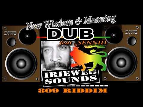New Wisdom & Meaning DUB  feat.Sennid - IRIEWEB SOUNDS 2017