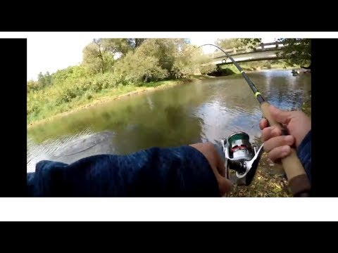Thames River - Exploring New Fishing Spots