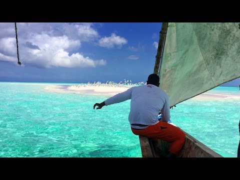 Paradise island - a sandbank in the Indian Ocean, Tanzania