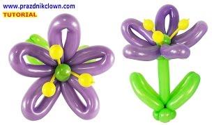 ЦВЕТОК ИЗ длинных ШАРОВ шдм СВОИМИ РУКАМИ How to Make a Balloon Flower Instructions