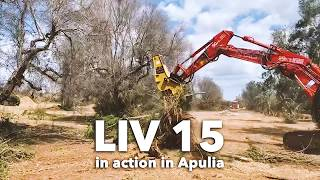 OSA DEMOLITION EQUIPMENT - SERIE LIV 15