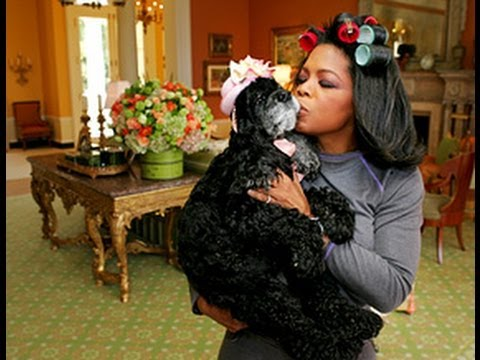 Oprah Special on Puppy Mills - MUST SEE!
