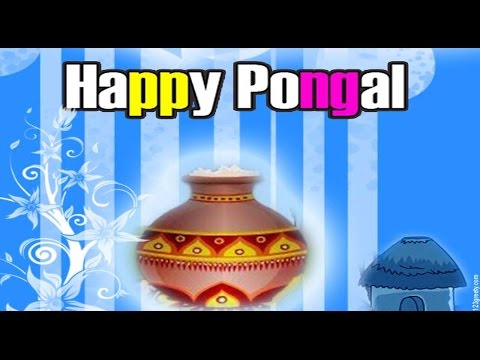 Happy Pongal 2018- Greetings, wishes, Whatsapp video, E-card, Free Download HD Video 6