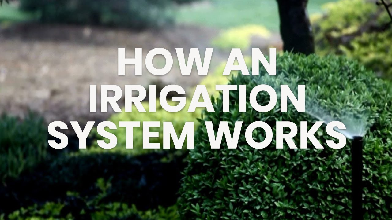 Rain Bird Introduction To How An Irrigation System Works Youtube