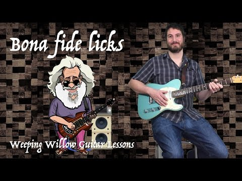 Bona fide licks - Jerry Garcia - Lick 1