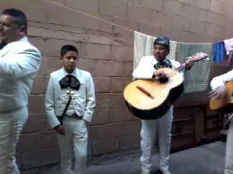 Mariachi tequila tj Viva veracruz 1