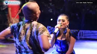 Download lagu Pegat Sewulan - Desy Paraswaty - Aam Nada Pantura Live Blubuk Losari Brebes_04-05-2018