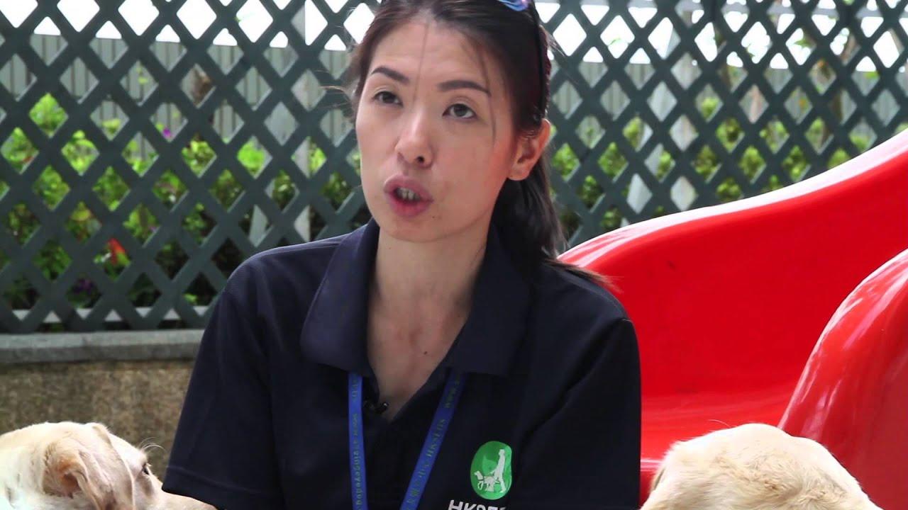 老師與學生 - 訓練員與導盲犬的故事 - YouTube