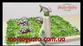 ChanteClair Vert - экологичная бытовая химия из Италии(Линейка Vert бытовой химии ChanteClair произведена из возобновляемых ресурсов растительного происхождения, гипоа..., 2014-11-20T15:39:56.000Z)