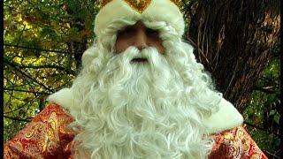 Красивая Говорящая Королевская борода Деда Мороза как у человека