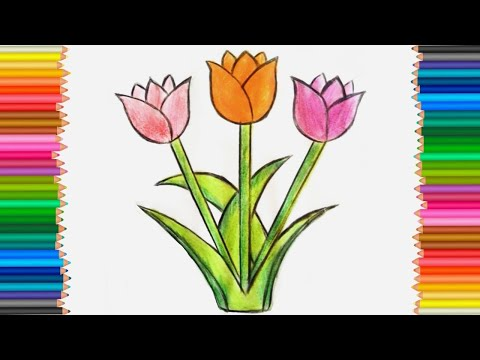 How to Draw Tulip flower step by step  Tulip Flowers Drawing   টিউলিপ আঁকা  