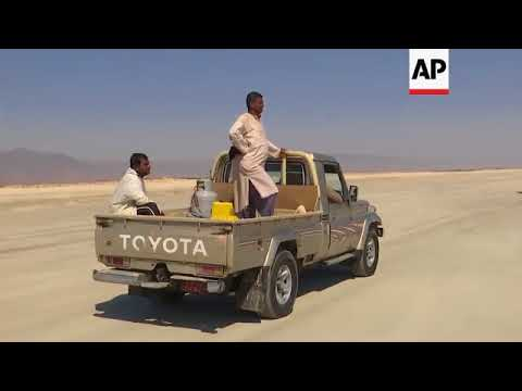 Sardine fishermen swap camels for jeeps in ancient way of life