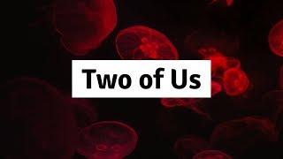 Louis Tomlinson - Two of Us  (Lyrics) | Panda Music Video