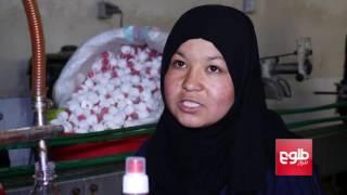 فقر همچنان دامنگیر زنان و کودکان کارگر در کشور