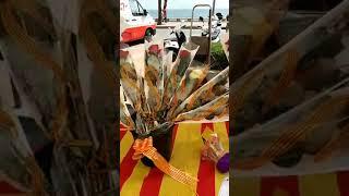 Льорет-де-Мар (Ллорет-де-Мар) Каталония. Экскурсии по Испании(, 2018-05-11T07:27:52.000Z)