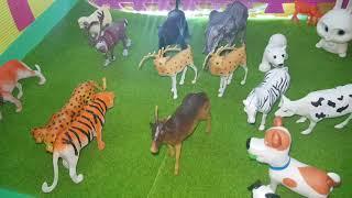 حديقة الحيوان screenshot 2