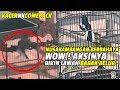 Kacer Nusakambangan Is Back Aksinya Bikin Lawan Babak Belur Cetak Double Winner  Mp3 - Mp4 Download