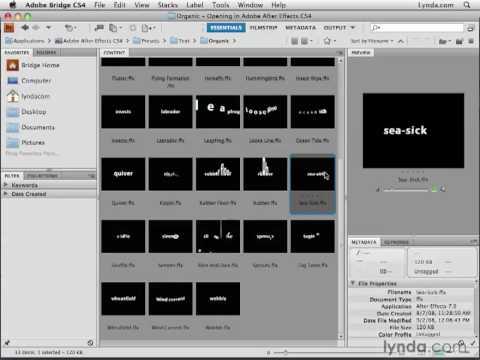 Text Animation in After Effects   Learn How to Create Text ...