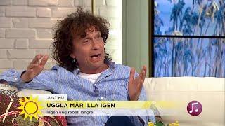 Efter 43 år på scen gör Magnus Uggla show med sina hits: