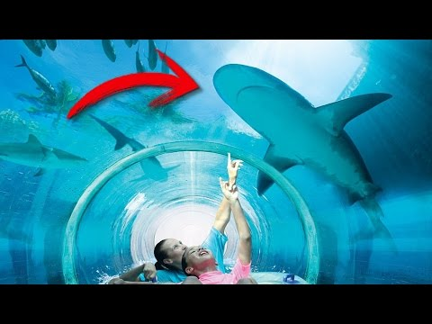 top 5 incre bles piscinas que no creer s que existen