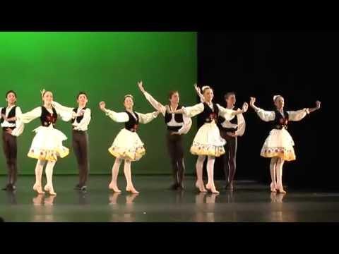 Robert Jerjen, Zurich Dance Academy, taZ, Ungarischer Tanz