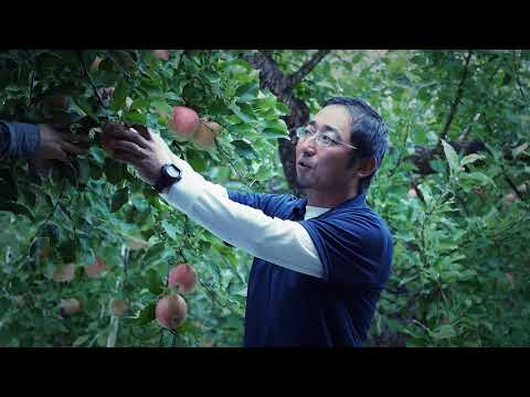 Fruit Tourism by COOL AGRI