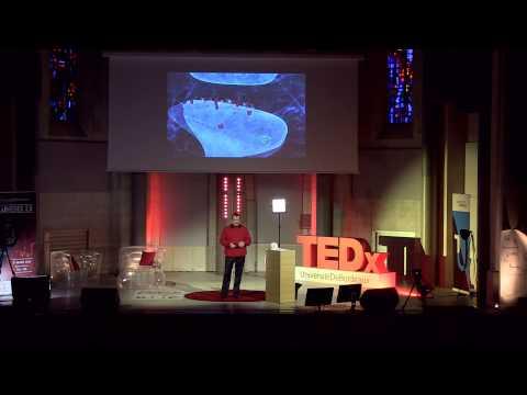 Our brain, this black box | Daniel Choquet | TEDxUniversitéDeBordeaux