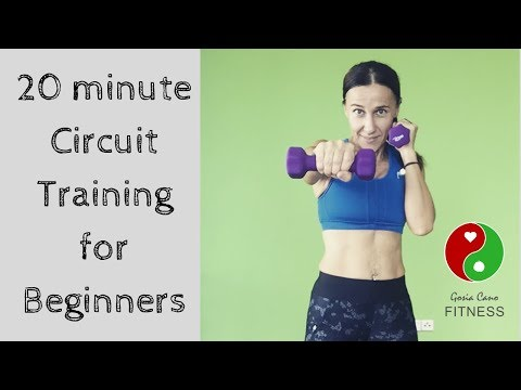 20 minute Circuit Training for Beginners