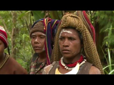 Papua New Guinea - Land of the unexpected